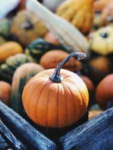 Halloween Pumpkin Chocolate Soufflé
