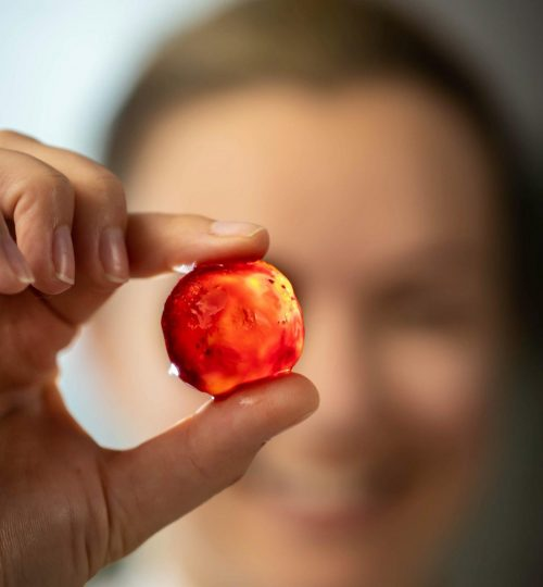 RUBY eggs | whole lot of cured umami goodness in a singe jewel